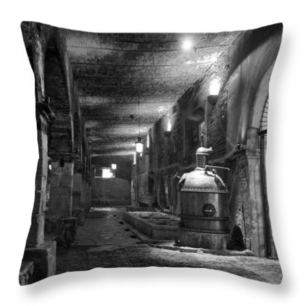 The Tequilera No. 2 Throw Pillow by Lynn Palmer