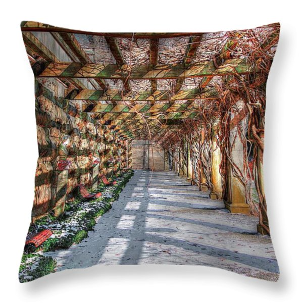 The Trellis Pathway In Winter Throw Pillow by Dan Stone