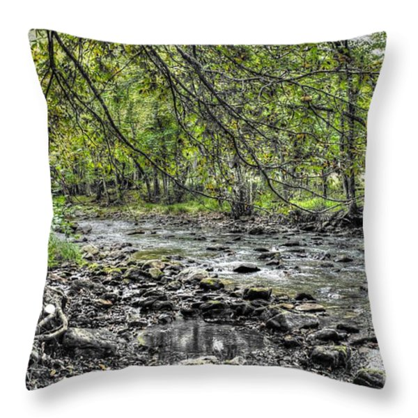 The Trout Stream Throw Pillow by Dan Stone