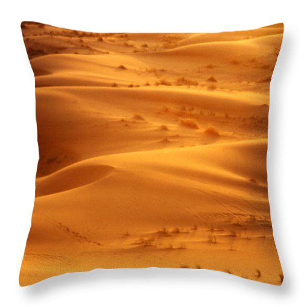 The Valley Of The Shadow Throw Pillow by Skip Hunt