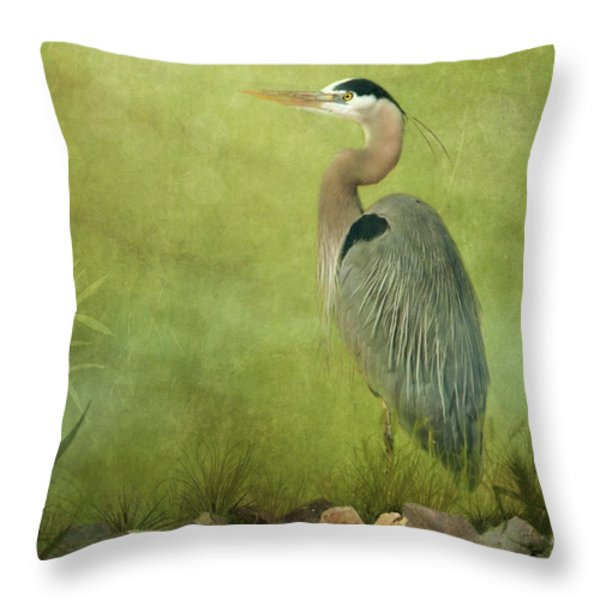 The Wait Throw Pillow by Reflective Moments  Photography and Digital Art Images