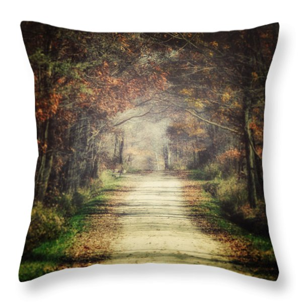 The Winding Road Throw Pillow by Lisa Russo