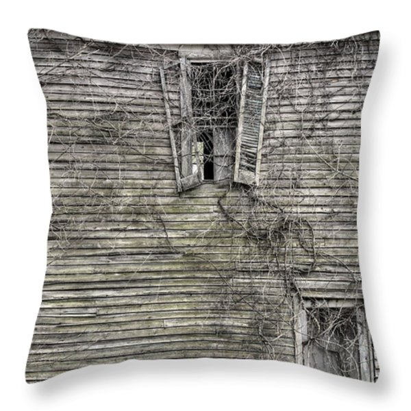 The Window up Above Throw Pillow by JC Findley