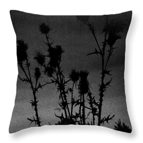 Thistles Throw Pillow by Hakon Soreide