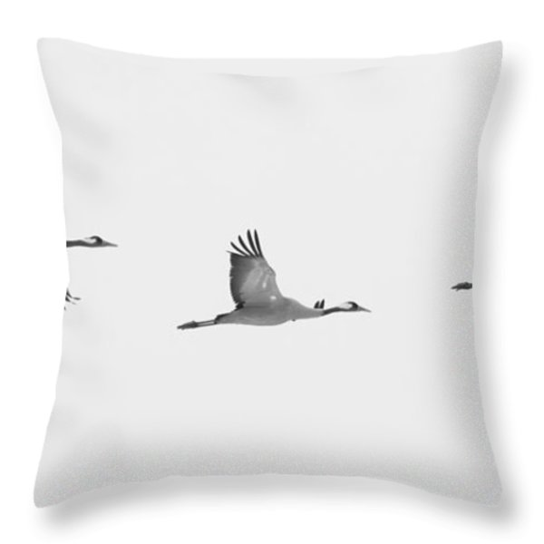 Three Flying Cranes Throw Pillow by Intensivelight