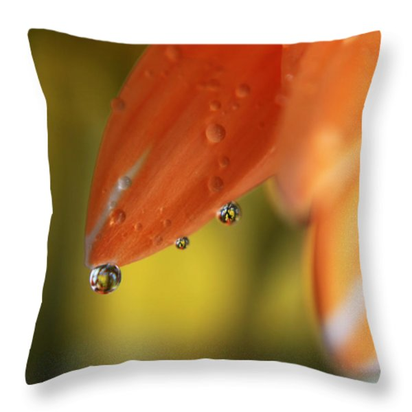 Three Friends Hangin' Out Throw Pillow by Laurie Search