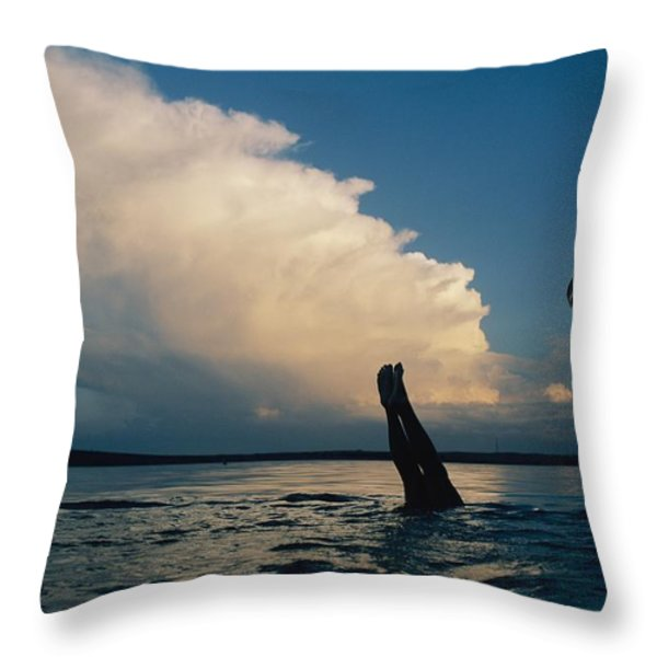 Three Pairs Of Legs Stick Throw Pillow by Joel Sartore
