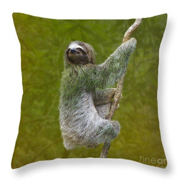 Three-toed Sloth Climbing Throw Pillow by Heiko Koehrer-Wagner