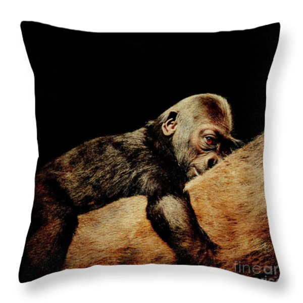 Through The Eyes Of Hasani . Square Throw Pillow by Wingsdomain Art and Photography