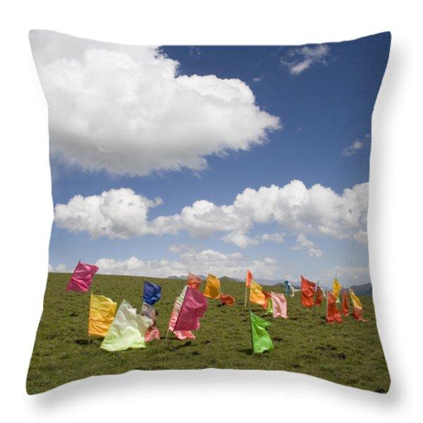 Tibetan Prayer Flags In A Field Throw Pillow by David Evans