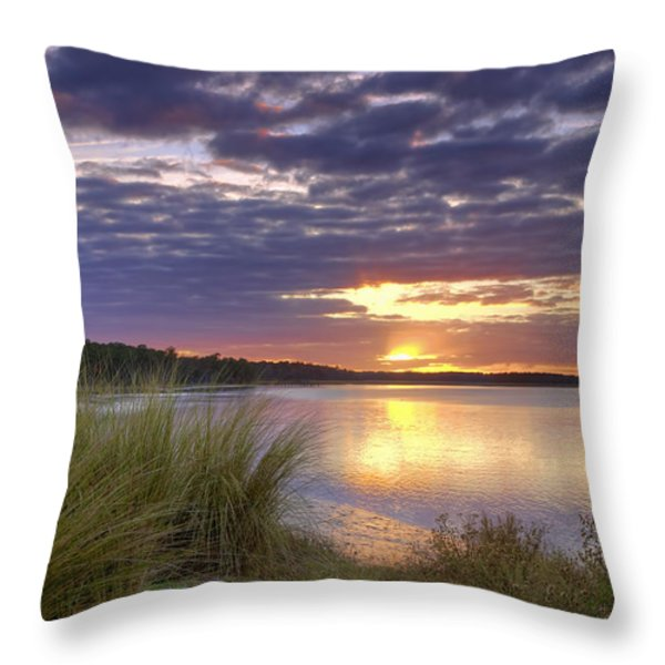 Tidal Estuary Throw Pillow by Phill  Doherty