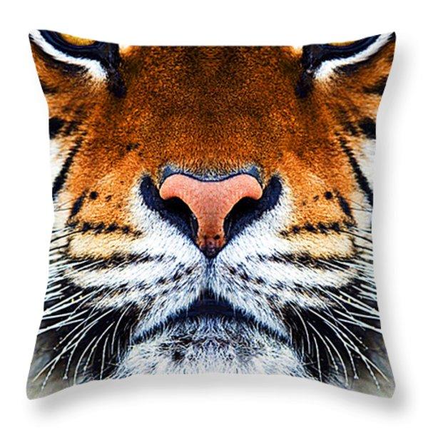 Tiger's Face Throw Pillow by Helen Stapleton