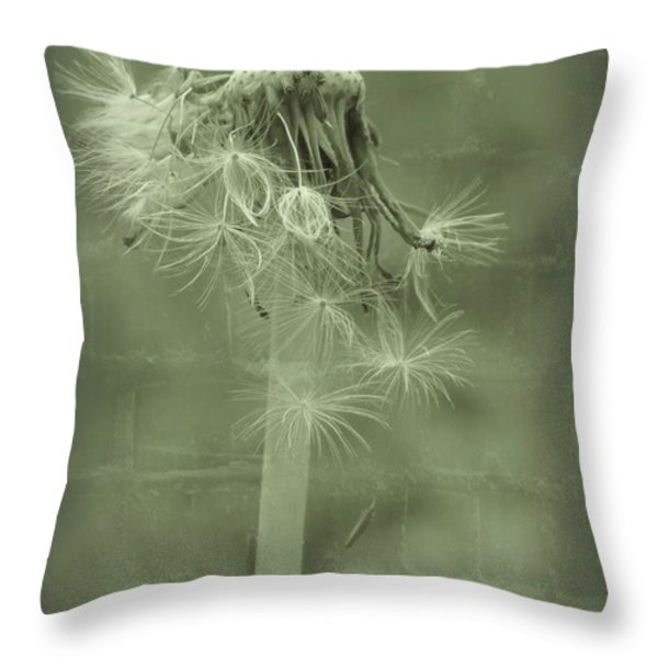 Time Of Life Throw Pillow by Angela Doelling AD DESIGN Photo and PhotoArt