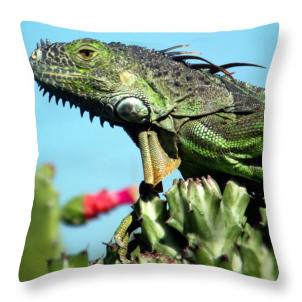To the Point Throw Pillow by KAREN WILES