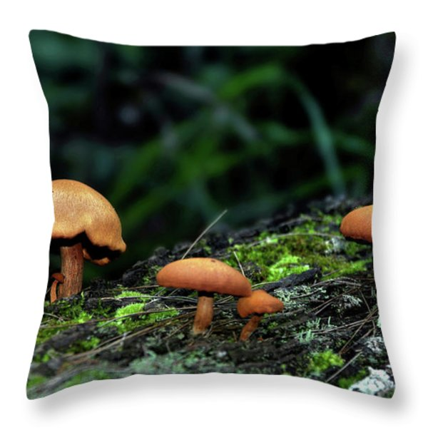 Toadstool Village Throw Pillow by Kaye Menner
