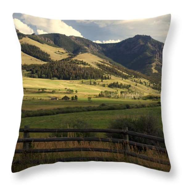 Tom Miner Vista Throw Pillow by Marty Koch