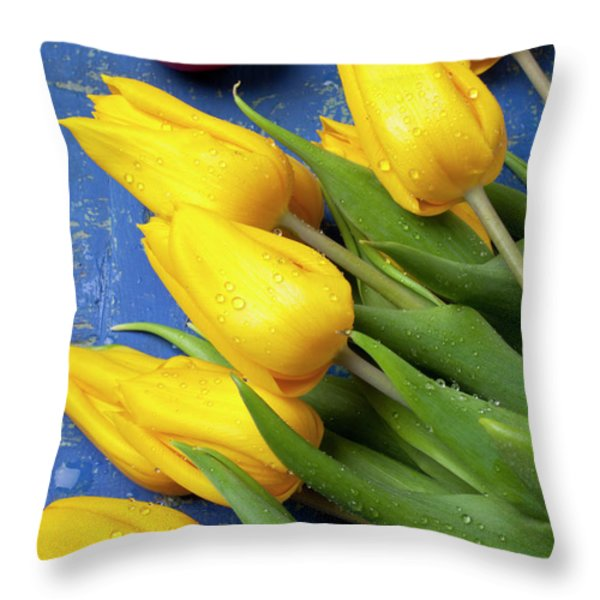 Tomato and tulips Throw Pillow by Garry Gay