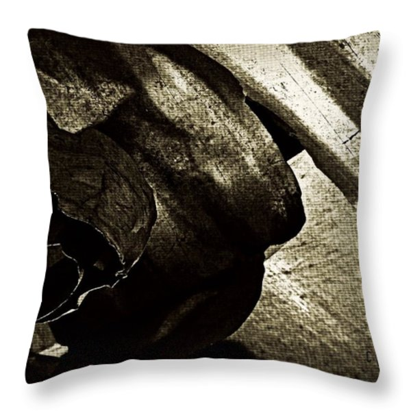 Torn  Throw Pillow by Chris Berry