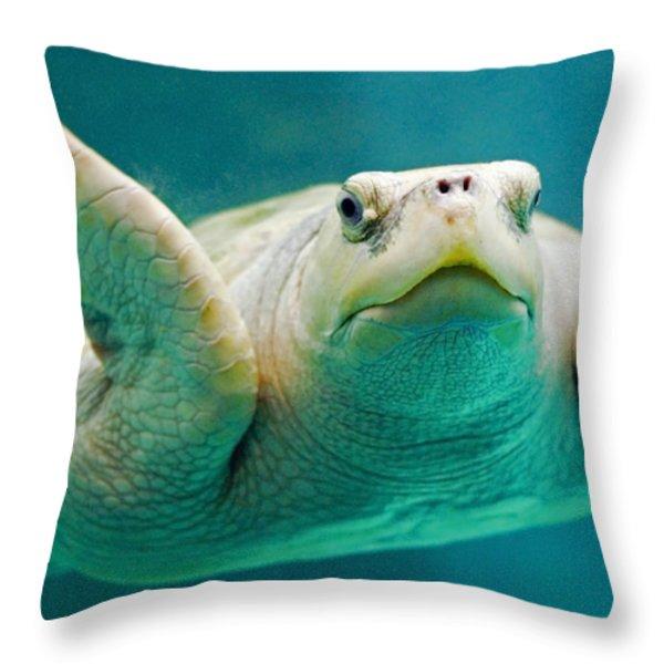 Tortuga Sonrisa Throw Pillow by Skip Hunt