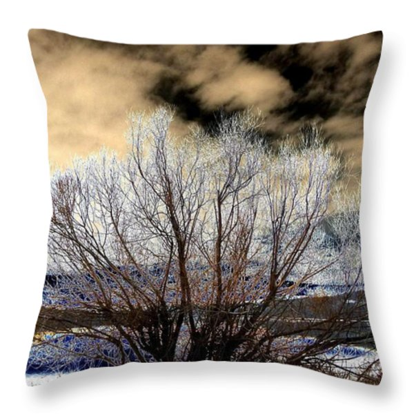 Touch Of Frost Throw Pillow by Will Borden