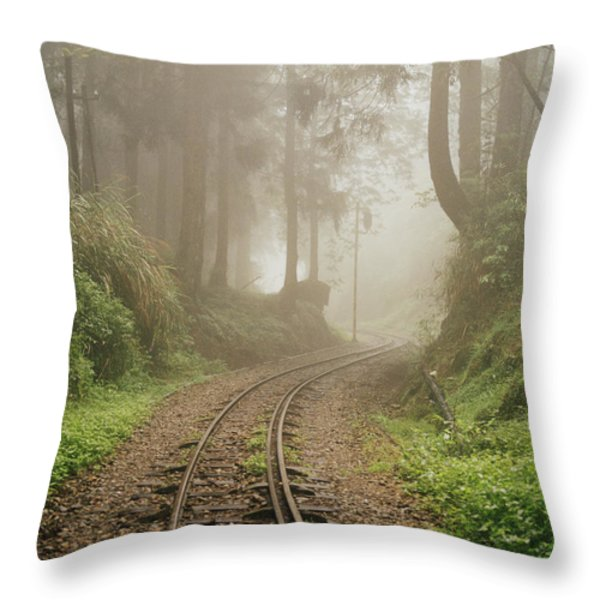 Train Tracks Found On The Forest Floor Throw Pillow by Justin Guariglia
