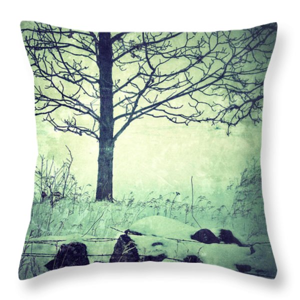 Tree And Fence In The Fog And Snow Throw Pillow by Jill Battaglia
