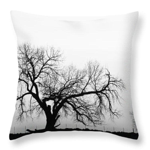 Tree Harmony Black And White Throw Pillow by James BO  Insogna
