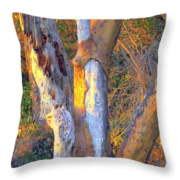 Tree In The Sunset Throw Pillow by Randall Thomas Stone