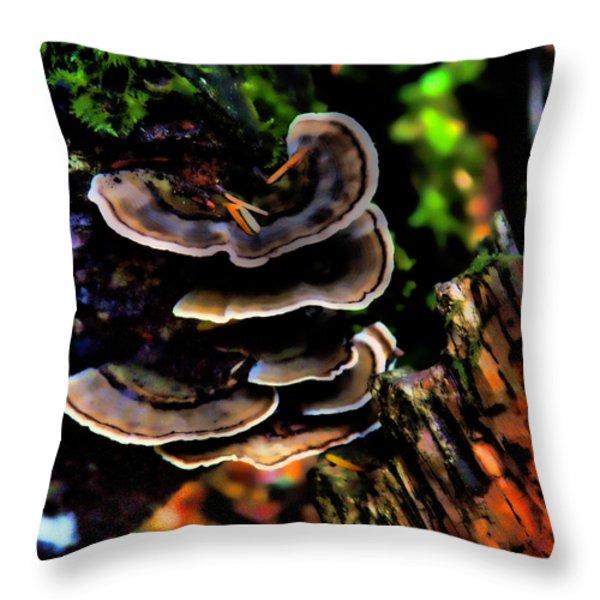 Tree Mushrooms Throw Pillow by David Patterson
