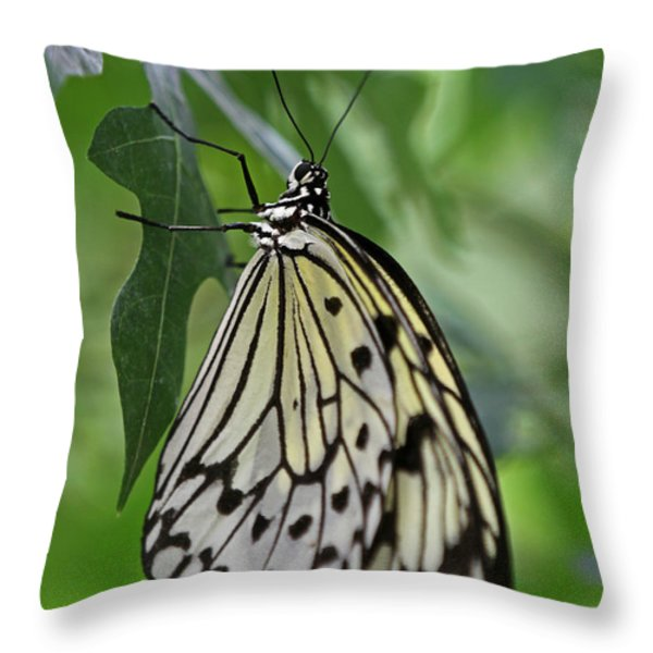 Tree Nymph Throw Pillow by Juergen Roth
