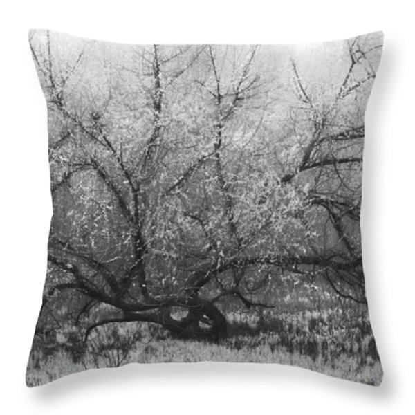 Tree of Enchantment Throw Pillow by Debra and Dave Vanderlaan