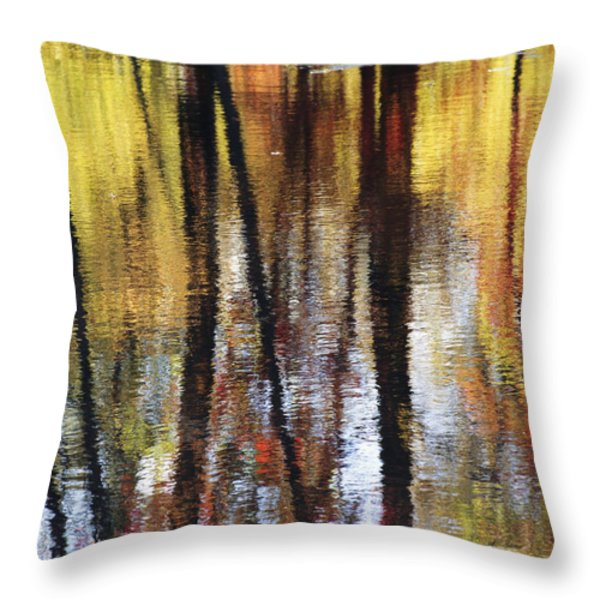 Trees And Fall Foliage Reflected Throw Pillow by Medford Taylor