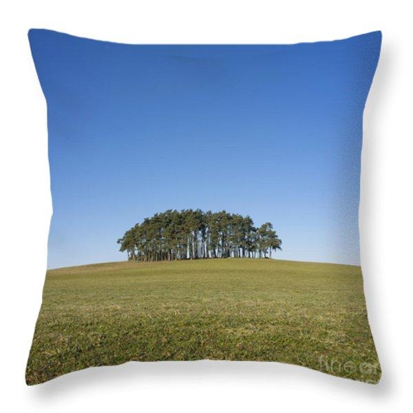 Trees on the hill Throw Pillow by BERNARD JAUBERT