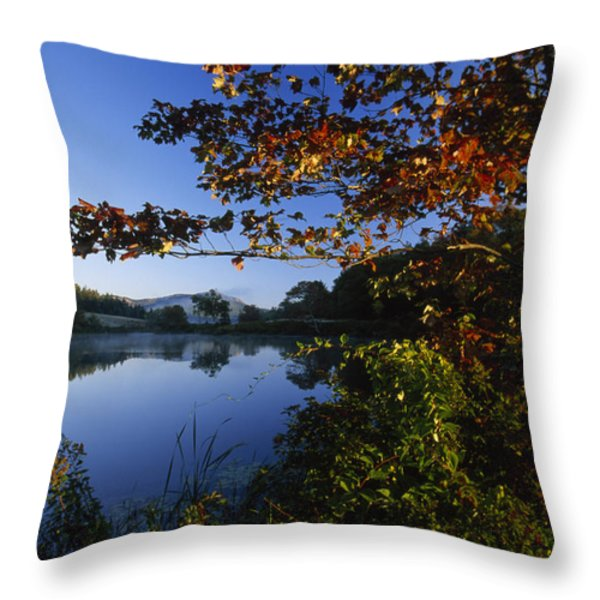 Trees With Fall Colors Along The Still Throw Pillow by Michael Melford