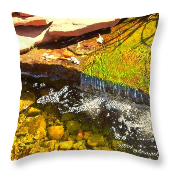 Trickle Waterfall Throw Pillow by Usha Shantharam