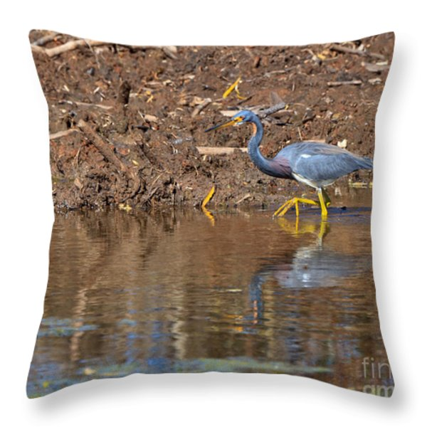 Tricolored Heron In The Winter Marsh Throw Pillow by Louise Heusinkveld