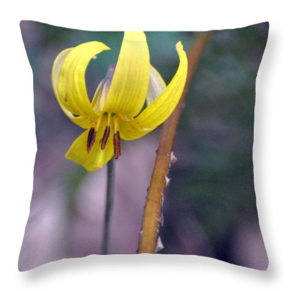 Trillium Throw Pillow by Marty Koch