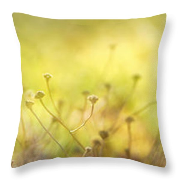 Triptico Winter Throw Pillow by Guido Montanes Castillo