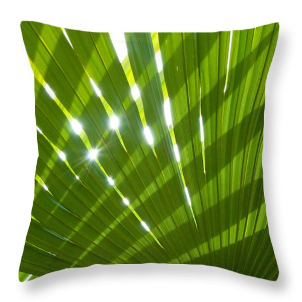 Tropical Palm Leaf Throw Pillow by Amanda And Christopher Elwell