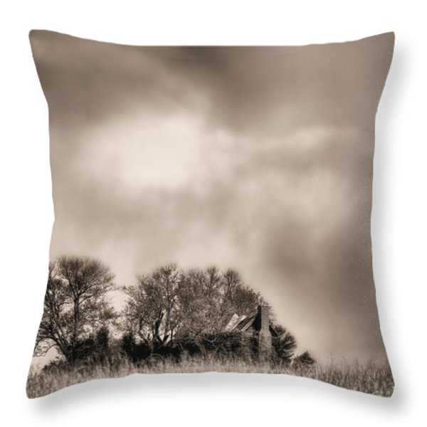 Trouble Brewing II BW Throw Pillow by JC Findley