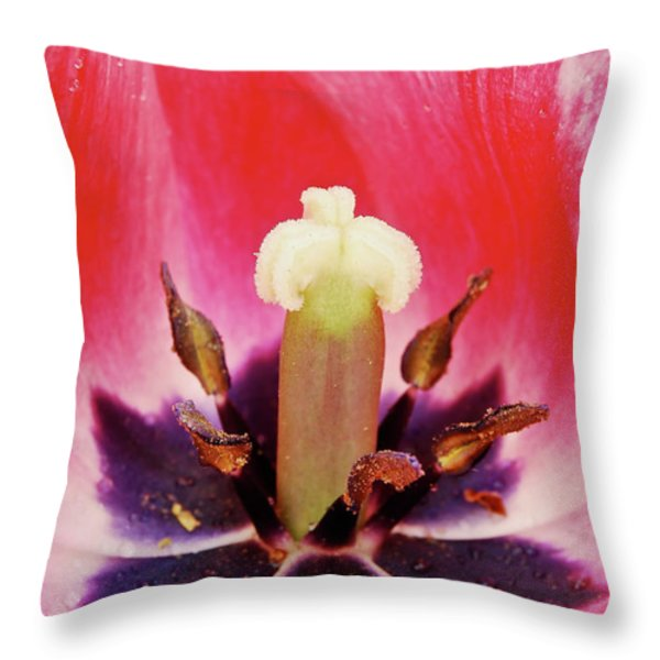 Tulip Flame Throw Pillow by Michael Peychich