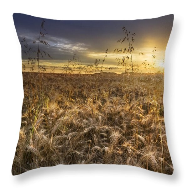 Tumble Wheat Throw Pillow by Debra and Dave Vanderlaan