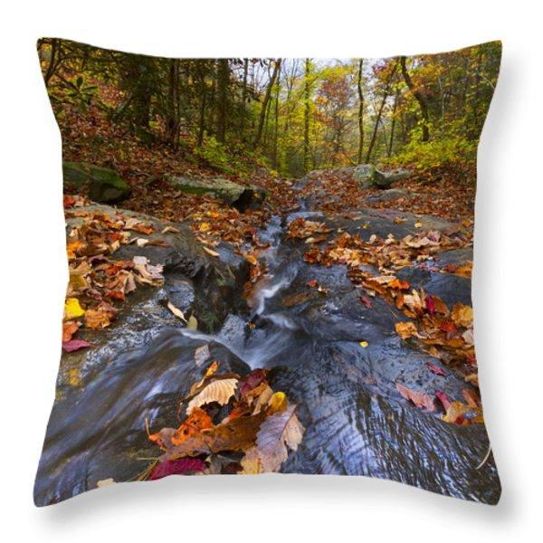 Tumbling Leaves Throw Pillow by Debra and Dave Vanderlaan