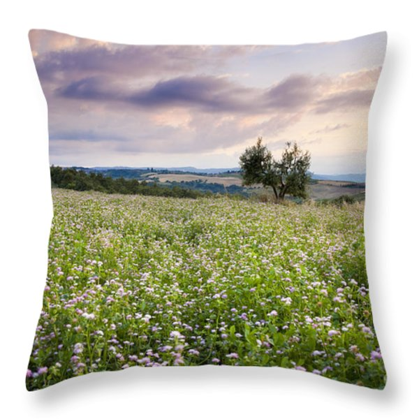 Tuscany Flowers Throw Pillow by Brian Jannsen