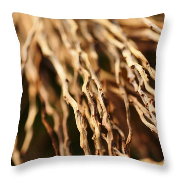 Twigs Throw Pillow by Cheryl Young