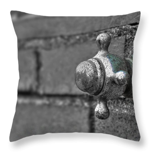 Twist And Turn Throw Pillow by Evelina Kremsdorf