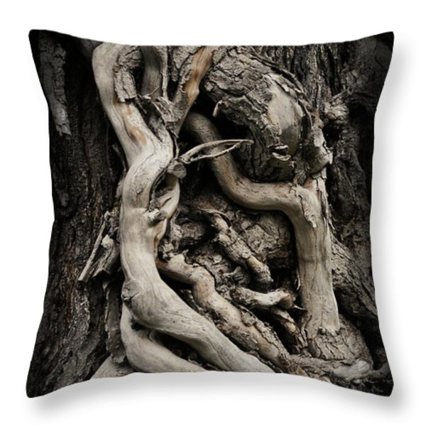 Twisted Dreams Throw Pillow by Mary Machare