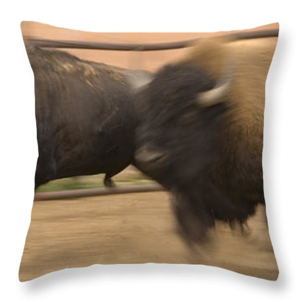 Two Bison Race Each Other Throw Pillow by Ralph Lee Hopkins