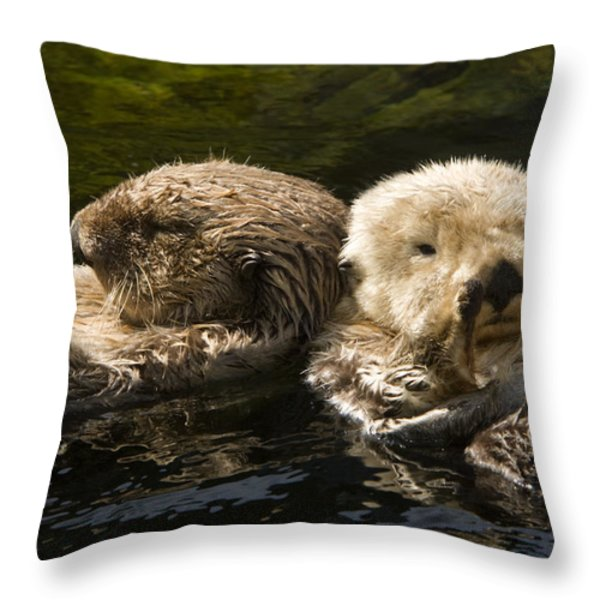 Two Captive Sea Otters Floating Back Throw Pillow by Tim Laman