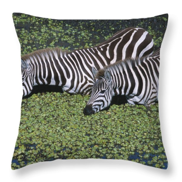 Two For Lunch Throw Pillow by Sandra Bronstein